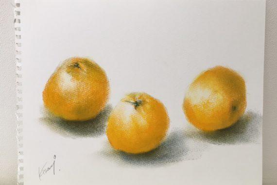 オレンジ はっさく いよかん 春 絵 パステル画 パステルアート デッサン スケッチ 色のね いろのね 沖明日香 絵画教室 枚方 八幡
